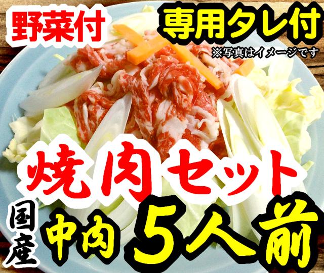 【F-5】さくら焼肉(スライス)&野菜セット詰め合わせ5人前 野菜付 専用たれ付 馬肉 桜肉