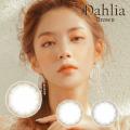 バービーアイ<度あり度なし>Dahlia(ダリア)ブラウン14.0mm 1年使用2枚