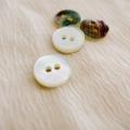 【丸型(定番)】グリーンシェル貝シェルボタン#bt025 2穴11.5mm【メール便対応】