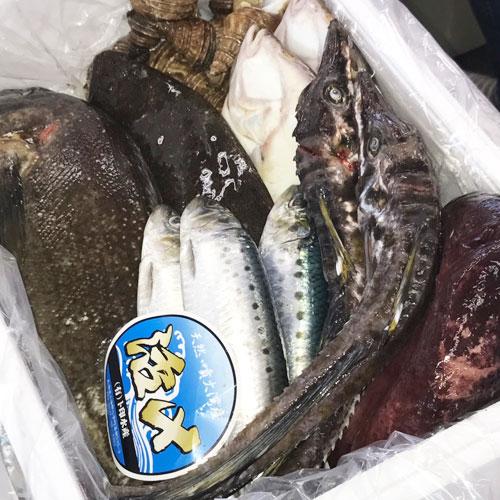 北海道産 鮮魚セット
