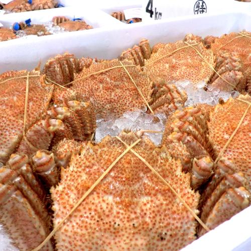 北海道の味!毛蟹 400g前後×3尾