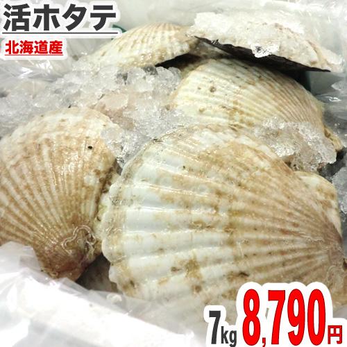 北海道産両貝活ホタテ 7.0kg(27~30枚前後)