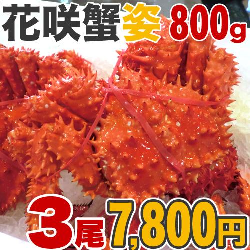 花咲蟹 800g前後×3尾