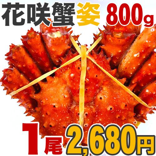 花咲蟹 800g前後×1尾【2尾まで同梱可】