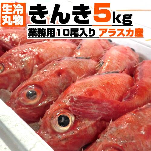 【業務用】生冷 丸物 きんき 5kg箱 10尾入り 【丸もの生冷凍】