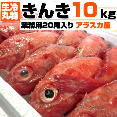 【業務用】生冷 丸物 きんき 5kg箱×2 | 20尾入り 【丸もの生冷凍】