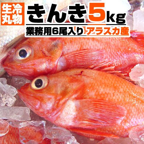 【業務用】生冷 丸物 きんき 5kg箱 6尾入り 【丸もの生冷凍】