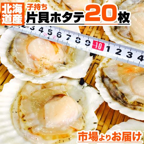 北海道産 片貝ホタテ 20枚