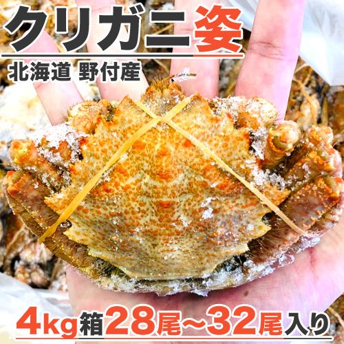 【業務用】クリガニ 4kg箱28-32尾入り【3箱まで同梱可】