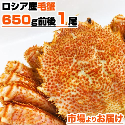 毛蟹 650g前後×1尾
