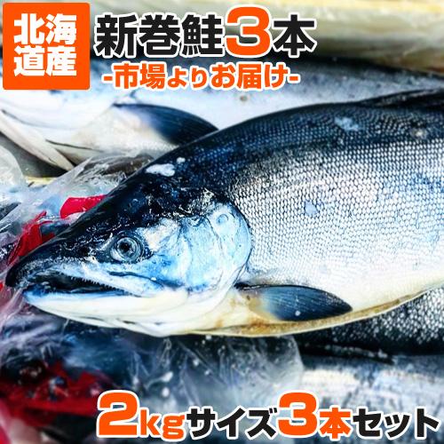 【業務用】北海道産 新巻鮭 2kgサイズ 3尾セット