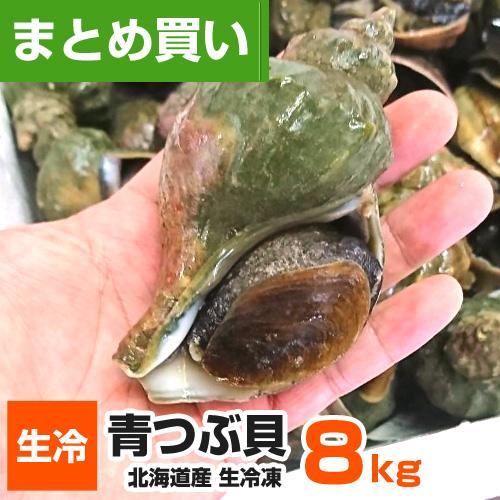 【まとめ買い】 生冷凍 つぶ貝 8kg (64コ~96前後)
