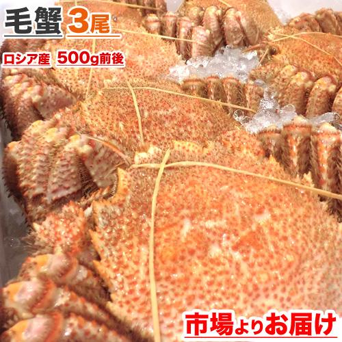 毛蟹 500g前後 × 3尾