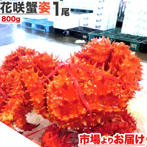 花咲蟹 800g前後×1尾
