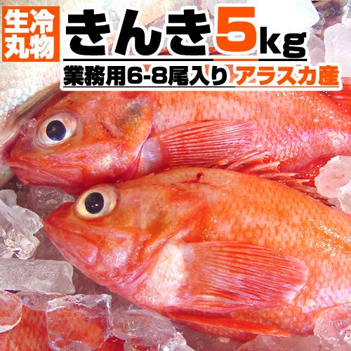 【業務用】生冷 丸物 きんき 5kg箱 6-8尾入り 【丸もの生冷凍】