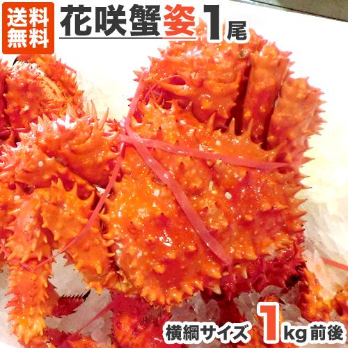 【送料無料】超特大 花咲ガニ 姿 1尾 1kg前後  幻のカニ 根室 花咲ガニ ハナサキガニ