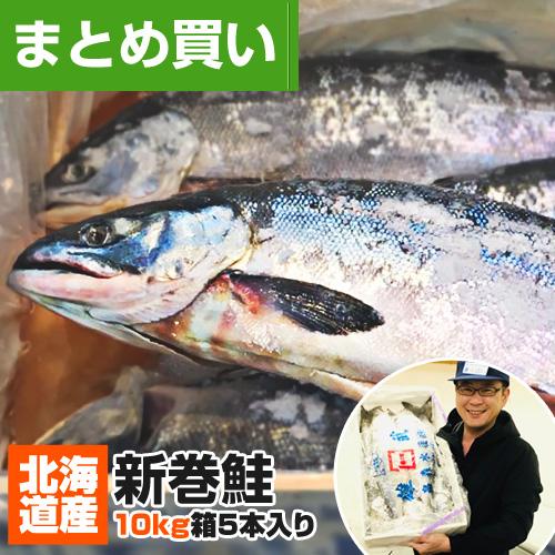 【まとめ買い】北海道産 新巻鮭 10kg箱 5尾セット