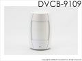 dvcb-9109.jpg