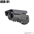 【ASD-01】SD録画機能搭載防犯カメラ [返品不可]