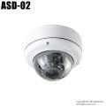 【ASD-02】SD録画機能搭載防犯カメラ [返品不可]