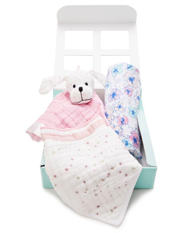 エイデンアンドアネイ 日本限定 新生児ギフトセット(出産祝い) 女の子用