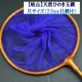 【岐山(ぎざん)】天然ひのき玉網・尺サイズ(2.0mm目網付)パープル