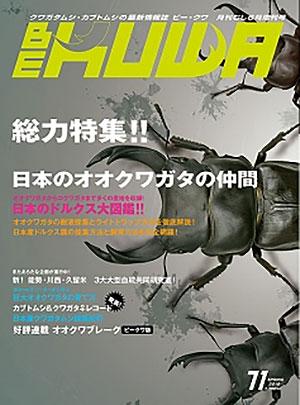 BE・KUWA71号 総力特集!! 日本のオオクワガタの仲間
