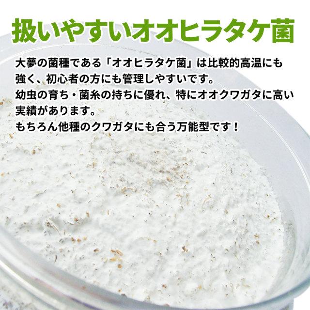 菌糸ビン 大夢Bプロスペック 販売 通販 専門店 ショップ お店 販売店 購入