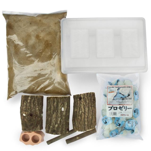 クワガタ産卵セット(材産み用) 販売 通販 専門店 購入