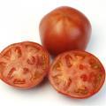 トキタ 豊作祈願1102 大玉トマト