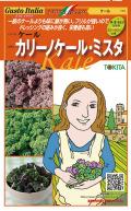 トキタ カリーノケール・ミスタ ケール 小袋(20粒×2)
