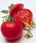 タキイ 桃太郎T93 トマト