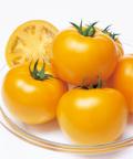タキイ 桃太郎ゴールド トマト