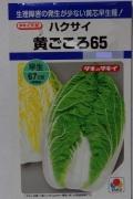 タキイ 黄ごころ65 ハクサイ