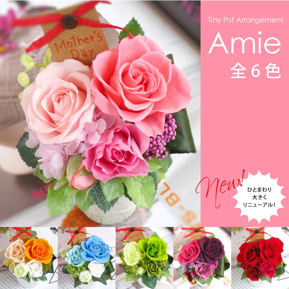 【即日発送】プリザーブドフラワー #Amie(アミ)