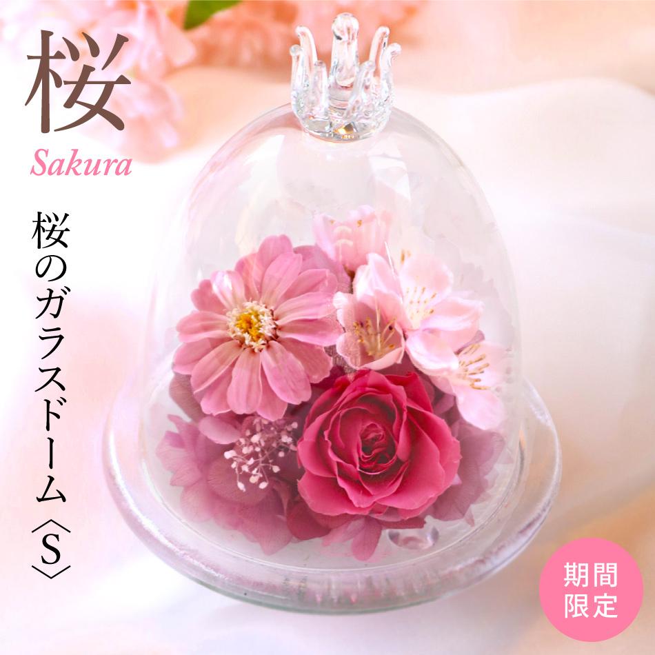 プリザーブドフラワー #桜のガラスドーム〈S〉(さくら) 【出荷:3営業日】