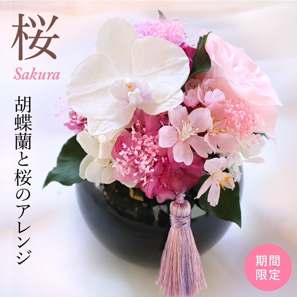 プリザーブドフラワー #胡蝶蘭と桜のアレンジ (さくら) 【出荷:3営業日】