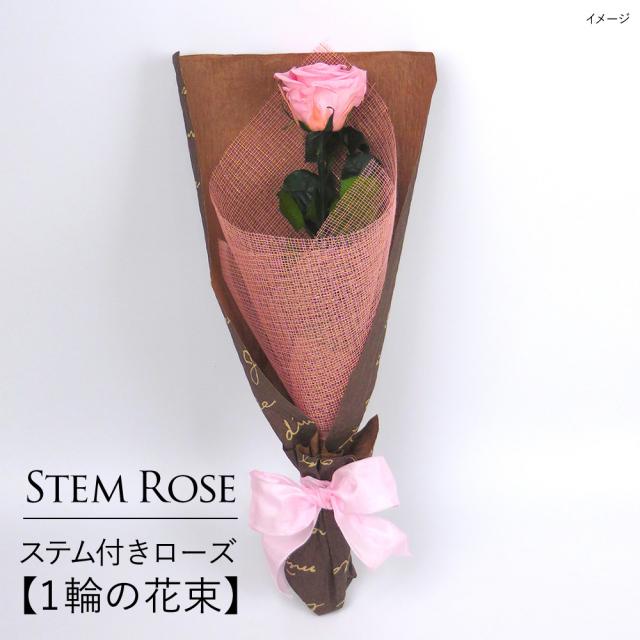 【即日発送】プリザーブドフラワー #ステム付きローズ【 1輪の花束】「なでしこJAPAN」にカズが贈ったバラ
