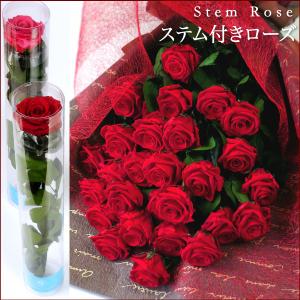 【即日発送】プリザーブドフラワー #ステム付きローズ 「なでしこJAPAN」にカズが贈ったバラ