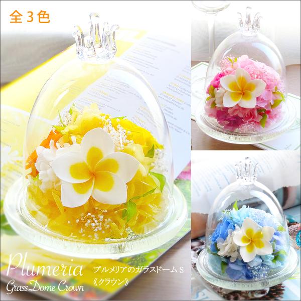 プリザーブドフラワー #プルメリアのガラスドーム〈S〉  【出荷:3営業日】