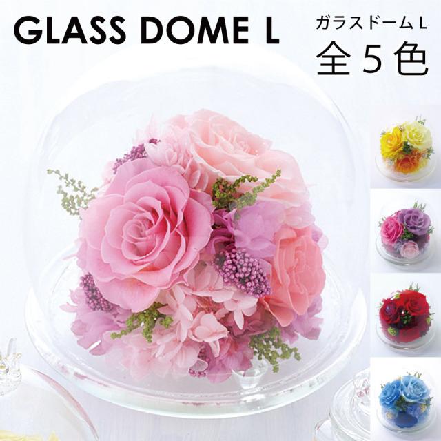 プリザーブドフラワー #ガラスドーム〈L〉  送料無料 【出荷:3営業日】
