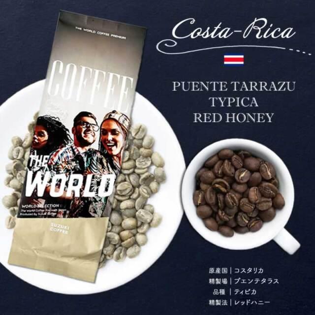 SUZUKI COFFEE 鈴木コーヒー コスタリカ