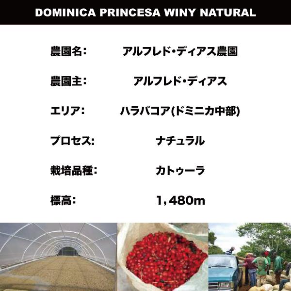 SUZUKI COFFEE 鈴木コーヒー ワールド・ドミニカ2