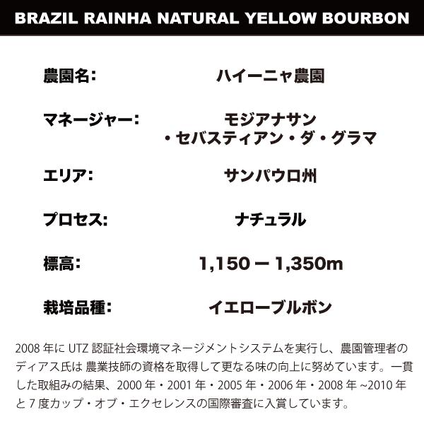 SUZUKI COFFEE 鈴木コーヒー ブラジルハイーニャイエローブルボン3