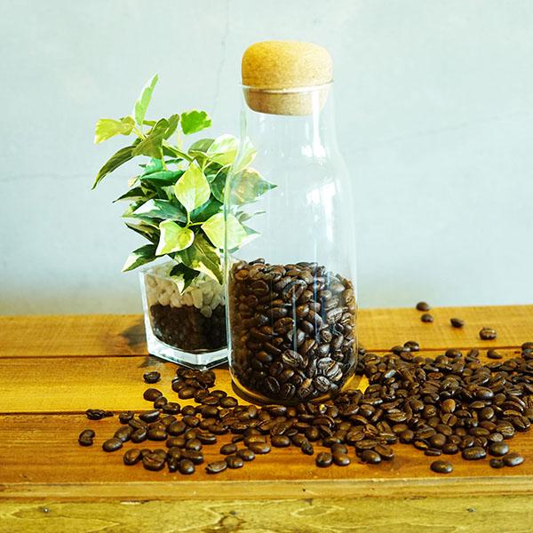 SUZUKI COFFEE 鈴木コーヒー KINTO ボトリットキャニスター300ml1