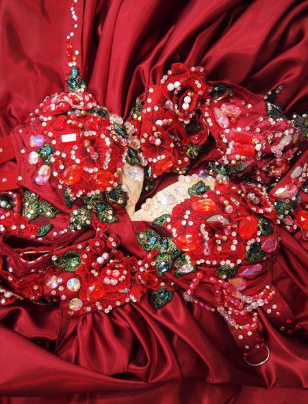 赤薔薇ベリーダンス衣装8 ミラーナ