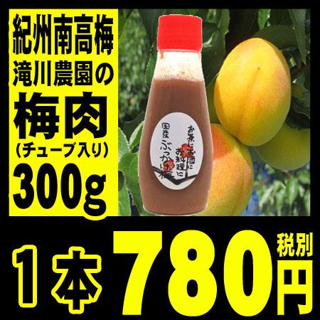 梅肉  紀州南高梅 滝川農園の手作り梅肉300g (チューブ入り)