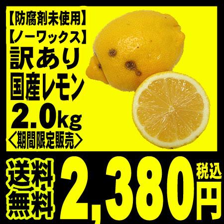 国産レモン  【送料無料】 鈴木さんらの国産レモン  (静岡産)  訳あり B品 2.0kg 「北海道・沖縄への配送は+540円」