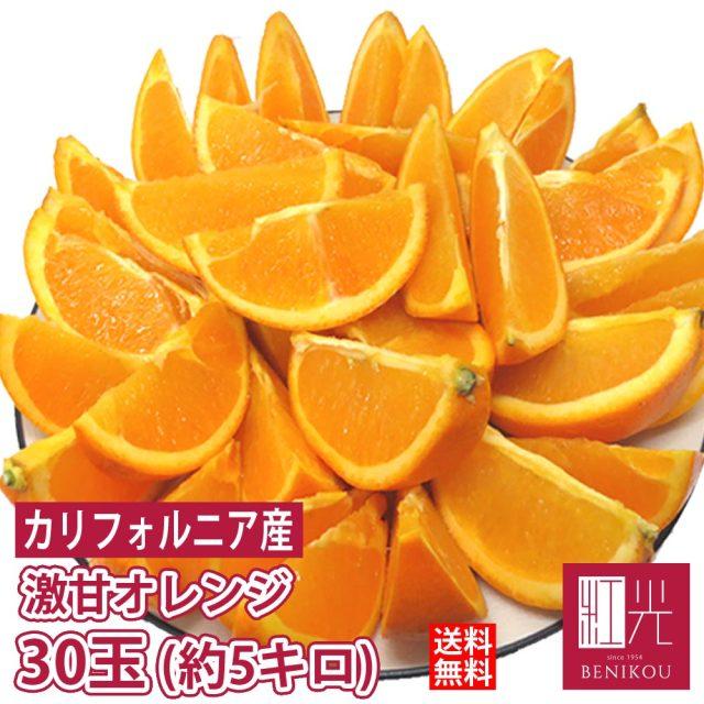 カリフォルニア産 完熟 バレンシアオレンジ 約5kg 24~30玉  「北海道・沖縄は+1100円」