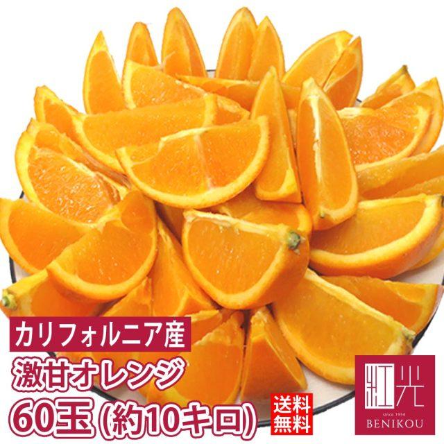 カリフォルニア産 完熟 バレンシアオレンジ 約10kg 48~60玉  「北海道・沖縄は+1100円」